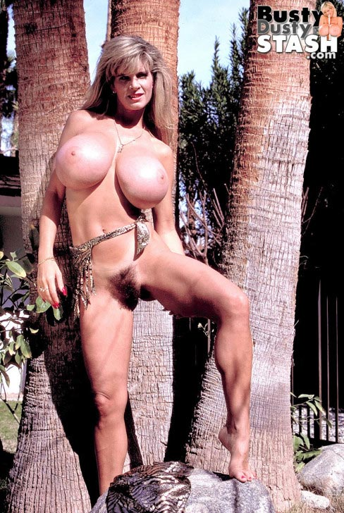 busty-dusty-big-tittie-amazon24