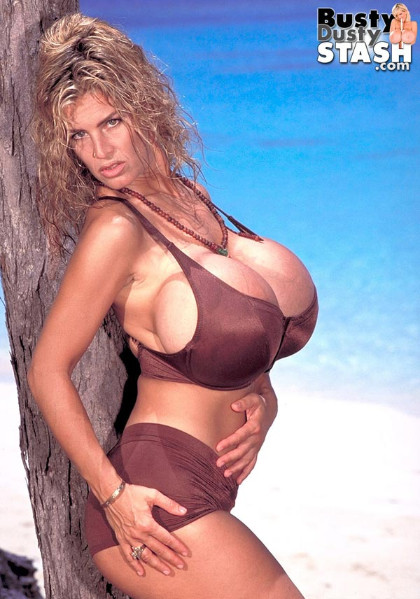 busty-dusty-in-brown-bikini-at-the-beach02