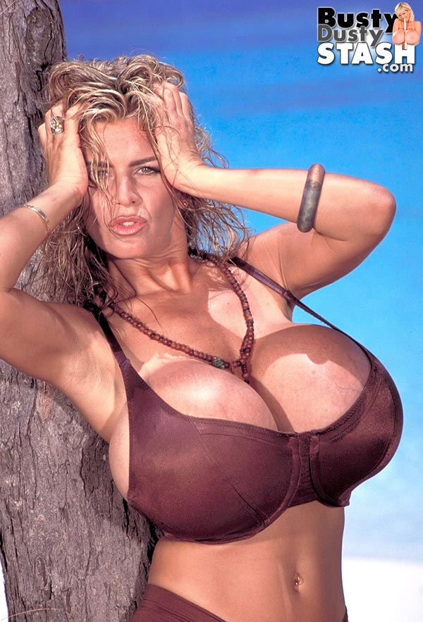 busty-dusty-in-brown-bikini-at-the-beach04