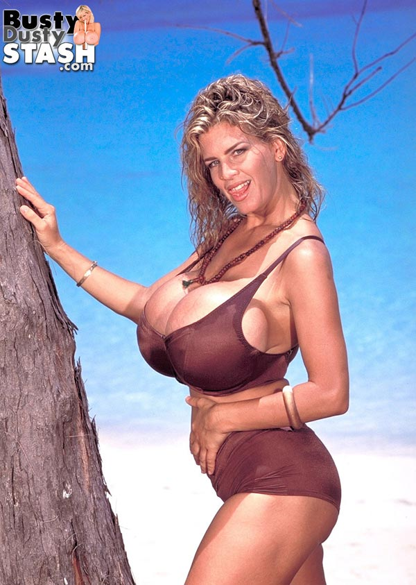 busty-dusty-in-brown-bikini-at-the-beach08