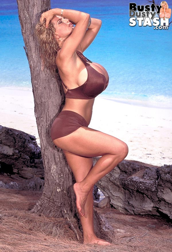 busty-dusty-in-brown-bikini-at-the-beach09