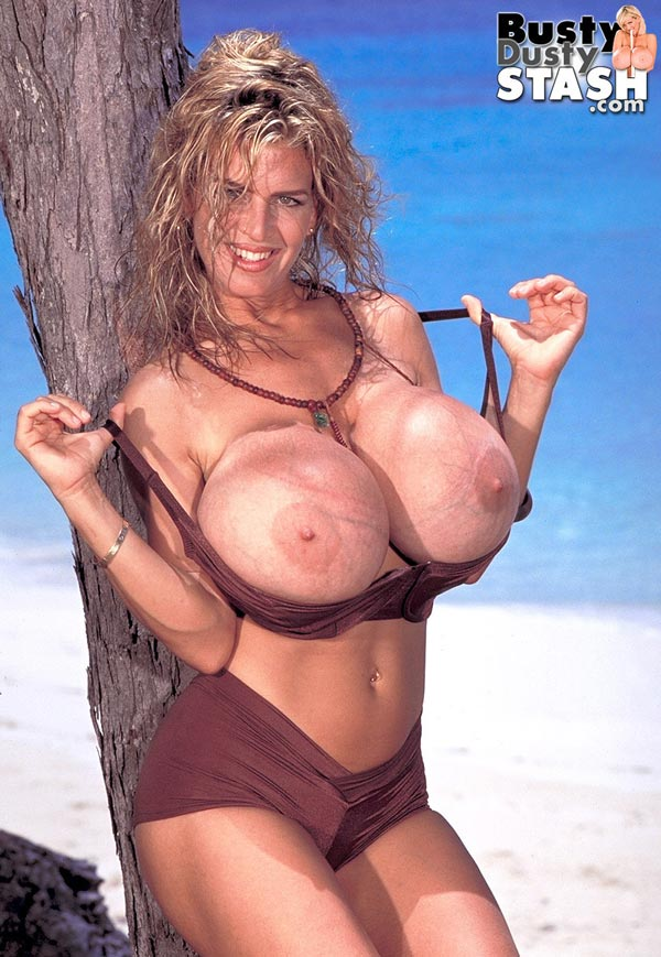 busty-dusty-in-brown-bikini-at-the-beach13