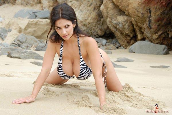 denise-milani-bikini-beach-zebra25