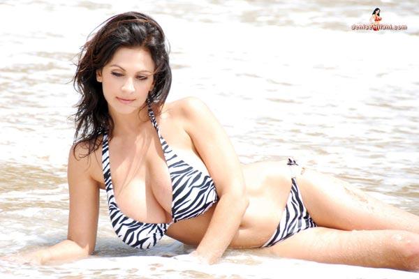 denise-milani-bikini-beach-zebra35