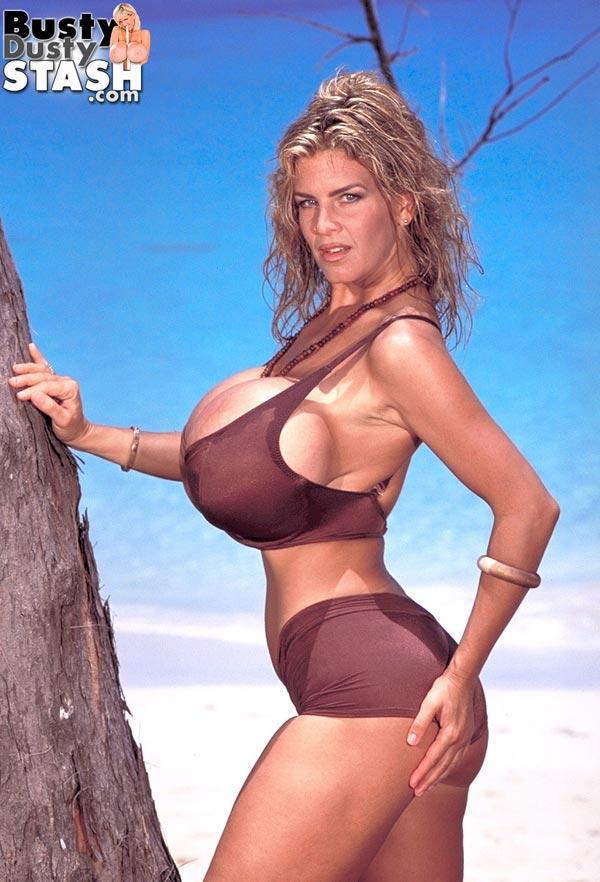 Busty Dusty In Brown Bikini At The Beach  The Boobs Blog-2424